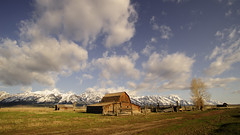 20090515 Teton Workshop-60.jpg (life_and_lens) Tags: us unitedstates moose wyoming grandtetons