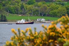 Splendour (Zak355) Tags: holiday scotland riverclyde boat ship tour scottish vessel splendour bute rothesay isleofbute formerfishingboat argyllcruising