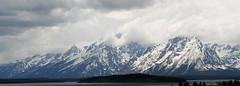 yllwttn-13 (srosscoe) Tags: mountains tetons grandtetonnationalpark jacksonlakelodge