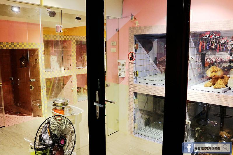 Hello! Dream Park 東區寵物美容沙龍019