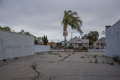 Tired Palm, Empty Lot (Alec C Miller) Tags: street city houses urban color tree art clouds digital buildings landscape photography los cityscape angeles fine overcast palm neighborhood