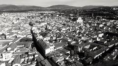 dall'alto della cupola fiorentina (archidream) Tags: florence firenze campaniledigiotto giotto campanile santamariadelfiore marmo biancoenero blackwhite