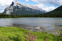 Banff Icon (Patricia Henschen) Tags: vermilionlakes vermilion lakes banff alberta canada banffnationalpark national park canadian rockies northern mountains lake clouds rocky mountrundle drive roadside larch trees