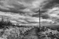 John Muir Way (AdMaths) Tags: adammathesonphotography adammatheson lochlomondnationalpark lochlomond canon ixus ixus82is canonixus canonixus82is 82is compactcamera canoncompact compact johnmuirway johnmuir munro mountainbiking mountainbike cycling cycle mono monochrome blackwhite bw blackandwhite classic cloud