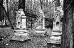img054_035 (chemyakyn) Tags: old film cemetery 35mm eos 150 cannon epson 100 rodinal 50e v550 foma tyumen fomapan r09 tekutjev