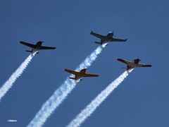150329_55_Formation (AgentADQ) Tags: show plane airplane coast flying wings florida aviation air over palm flagler 2015