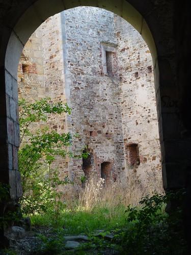 Rzut okiem na dziedziniec zamku w Drzewicy