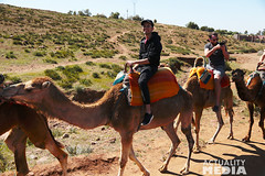 KS4A5280 (Actuality_Media) Tags: morocco maroc camels excursion studyabroad actualitymedia documentaryoutreach filmabroad
