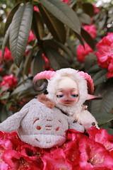 Schafi und I-Aah (Aria Wings) Tags: flower animal doll sheep sweet bjd esel zucker plschtier schaf balljointeddoll iaah kuschel dollzone schafi eventdoll tsumtsum lovelyitem