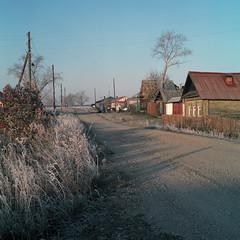 (Anton Novoselov) Tags: morning 120 6x6 tlr film rolleiflex square frost village russia medium format 35 e2  xenotar