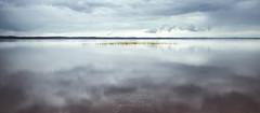 Dreamy skyline ((Virginie Le Carré)) Tags: lake france reflection reed skyline landscape grey gris cloudy horizon lac beforethestorm paysage reflets roseau sanguinet blackcloud nuageux avantlorage bouéejaune