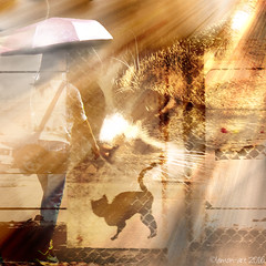 Catching some rays (Lemon~art) Tags: woman pet cats sunshine umbrella fence monotone photomontage sunrays