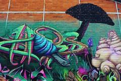 3GC_1229 rue Hortense Bordeaux (meuh1246) Tags: streetart animaux escargot champignon 3gc ruehortense