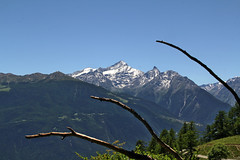 Val d'Aosta - Valle Centrale: Thouraz, la cornice della Grivola e del Gran Nomenon (mariagraziaschiapparelli) Tags: valdaosta thouraz allegrisinasceosidiventa camminata escursionismo montagna mountain estate panorama