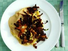 Pasta ai fungi porcini - Pasta mit Steinpilzen (zikade) Tags: pasta pilze steinpilze nudeln essen gericht