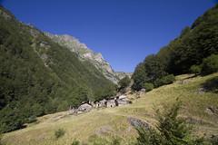 DADE8873 (davidesantiano) Tags: blu blue sky avventura adventure sun sole estate summer mountain turisti turist trekking hiking massello cascata cascate acuqa fall prato