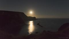 the moon was out for a swim (lunaryuna) Tags: england dorset jurassiccoast coast landscape seascape shoreline buffs highcliffs chalkcliffs night nightphotography nocturnalphotography sky nightsky starrynight fullmoonrising moon light moonlight lightmood lunaryuna
