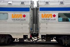 Stainless Steel Symmetry (kenyoung3) Tags: viarail viarailcanadian buddcompany thecanadian passengertrain streamliner stainlesssteel passengercars train
