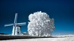 Moulin Defrenne (BE)-ir (Yasmine Hens) Tags: moulindefrenne moulin infrarouge hensyasmine namur belgium wallonie europa aaa belgi belgia europe belgien  belgique blgica   belgie  belgio    bel be