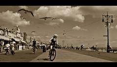The Birds III : Coney Island (Robert S. Photography) Tags: birds gulls sky cinamatic women bicycles cloud benches summer shops beach sepia coneyisland nikon coolpix l340 iso80 brooklyn newyork september 2016