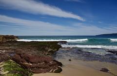 Red and green rock platform (jack eastlake) Tags: far south coast walks bush walking tracks wild beaches beach rock platform surf national parks fishing ocean