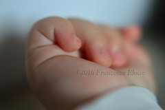 hand of my baby ♥ (franci.onnis) Tags: hand child baby life macro happiness purity purezza gioventù neonato dolcezza dolce tenerezza affetto amore love felicità