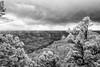 Grand Canyon, North Rim (jev) Tags: grandcanyonnationalpark grandcanyon havasupaitribe hualapaitribalnation trielmar161821mm unescoworldheritagesite coloradoriver highdynamicrange leicam8 northrim 06000000 06002000 06002002 06007000 16mm 86023 avenon az environment hdr ongtupqa super wate angle arizona blackandwhite blue daybreak digitalinfrared ecology environmentalism geological geology infra infrared land monochrome nationalpark rock rocks scenery spectrum sunup sunrise sunrises surreal white wide wwwartqcom