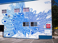 Peacock (Stv.) Tags: aroundtown mountpleasant mural muralfest publicart vmf2016 vancouver britishcolumbia canada exif:lens=olympusm17mmf18 exif:make=olympusimagingcorp geo:lat=49267475848077 exif:isospeed=100 geo:country=canada geo:state=britishcolumbia camera:model=em5 exif:aperture=ƒ18 geo:city=vancouver geo:lon=12310162149165 camera:make=olympusimagingcorp geolocation exif:focallength=17mm exif:model=em5