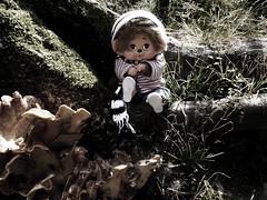 Jareth and the mushrooms (Monkey Culture) Tags: monchhichi toho daisuke toy stuffedtoy toyart toyphotography