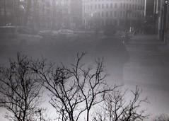 (mikehip) Tags: black white double exposure film 35mm kodak tree person city new york manhattan holga photo photography nyc fall street
