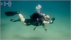 Diving In Caesarea 2016 - Old Caesarea Harbor (darkhelgi) Tags: diving caesarea israel mediterraneansea scubadiving extremediveteam underwaterteam travel underwater