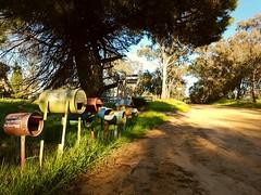 Jindera Waking (heritagefutures) Tags: letter boxes rural tin can milk stonerise jelbart road jindera nsw