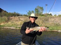 Dusty Missouri River Rainbow (FirstCastFly) Tags: fly fishing montana mo missouri flyfishing trout missouririver catchandrelease flyfishingjunkie firstcastoutfitters