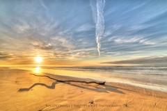 Woodside Sunrise (Shutterboost Photography) Tags: ocean beach water sunrise sand nikon australia victoria driftwood hdr goldenhour d810 woodsidebeach earlystarts samyang14mmf28