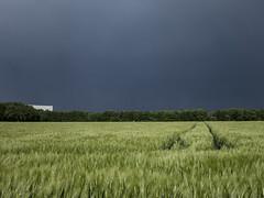 Gewitterwolken über Dortmund