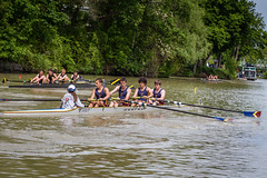 IMG_6495May 24, 2015 (Pittsford Crew) Tags: crew rowing regatta 2015 pittsfordcrew