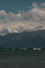 Eiger - Mönch - Jungfrau ( Berg - Mountain ) in den Alpen - Alps mit Thunersee bei Gwatt im Berner Oberland im Kanton Bern der Schweiz (chrchr_75) Tags: chriguhurnibluemailch christoph hurni schweiz suisse switzerland svizzera suissa swiss chrchr chrchr75 chrigu chriguhurni mai 2015 albumzzz201505mai hurni150529 kantonbern kanton bern berner oberland berneroberland thunersee alpensee see lake lac sø järvi lago 湖 albumthunersee albumregionthunhochformat thunhochformat hochformat mönch kantonwallis kantonvalais berg mountain montagne alpen alps albumjungfrau jungfrau viertausender montagna albumdreigestirneigermönchjungfrau dreigestirn eiger susisa bergeiger albumeiger