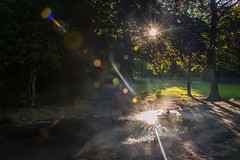 after the rain (Star*sailor) Tags: park light sunset sun reflection rays