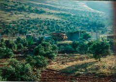 Mercava (Normann Photography) Tags: lebanon unitednations 1992 peacecorps lb peacekeepers 425 israeldefenseforces nabatieh unifil mercava unitednationsinterimforceinlebanon fntjeneste kaoukaba unservice kontigent29 idfconvoy