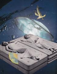 Surrealistic Mattress (Angie Naron) Tags: sleeping art collage fan jellyfish seagull dream surreal dreaming dreams mattress collagebyangienaron thekollagekit wwwkollagekitblogspotcom