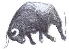 toro a lapicero (ivanutrera) Tags: pen sketch drawing sketching bull draw dibujo toro lapicero boligrafo dibujoalapicero dibujoenboligrafo