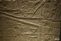 _WMP3054 OK (WM ) Tags: history egipto historia pasado faraones inframundo egiptologa