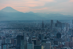Tokyo and Mount Fuji (Role Bigler) Tags: city building japan tokyo fuji mountfuji stadt nippon skytree huserschluchten