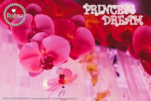 Braham-Wedding-Concept-Portfolio-Princess-Dream-1920x1280-07