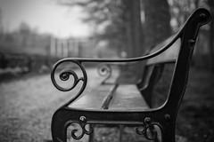 dans le parc  (in the park) (l'imagerie potique) Tags: limageriepotique poeticimagery hmbt banc bench bokeh noiretblanc blackandwhite