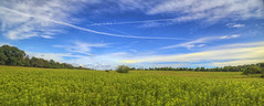 Outdoors (milfodd) Tags: sky field clouds july photomerge contrails 2016 singlerawhdr
