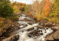 Rennie's River (Karen_Chappell) Tags: canada newfoundland nfld stjohns grandconcourse river nd110 longexposure water trees autumn green orange fall nature scenery scenic landscape october rocky rocks renniesriver avalonpeninsula