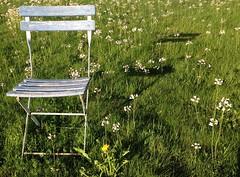 sitting (donatkuonen) Tags: stuhl kontrast