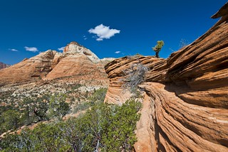 East Zion