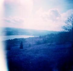 (liquidnight) Tags: film analog mediumformat landscapes lomo lomography purple hiking toycamera surreal diana dreamy analogue dianaf vignetting dreamscape columbiarivergorge filmphotography coyotewall lomochrome lomochromepurple lomochromepurplexr100400 coyotelabyrinth